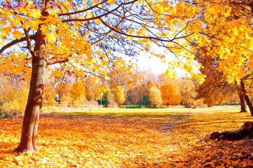 آموزش ماه های میلادی - فصل پاییز