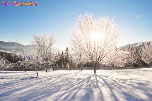 آموزش ماه های میلادی - فصل زمستان